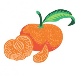 Citrus Tangerina - illustrations by Joren Eulalee for Shoots & Roots Bitters